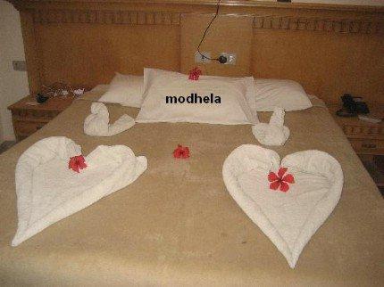 l art de pliage de serviettes touche de soie. Black Bedroom Furniture Sets. Home Design Ideas